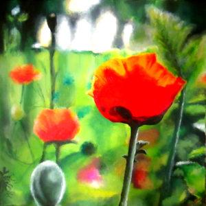 Poppy flower meadow painting