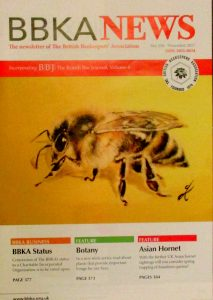 Bee painting magazine cover