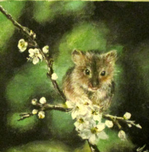 Fieldmouse hawthorn painting
