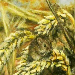 Fieldmouse on corn painting