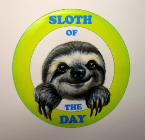 logo design sloth cute cartoon nature