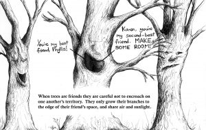 """Best Friends"" - part of the Talking Trees collection (available as greetings cards at £2.50 and limited prints at £40)"